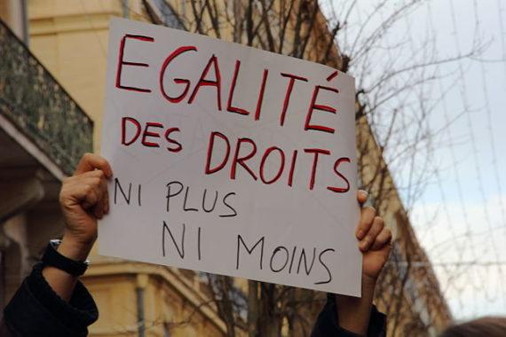 640px-Manifestation_mariage_pour_tous,_Toulouse_06